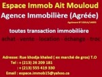 Agence immobiliere Ait Mouloud