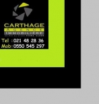 Agence immobiliere carthage hydra