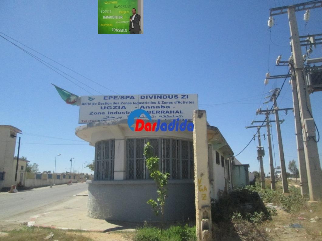 Location Hangar  Annaba