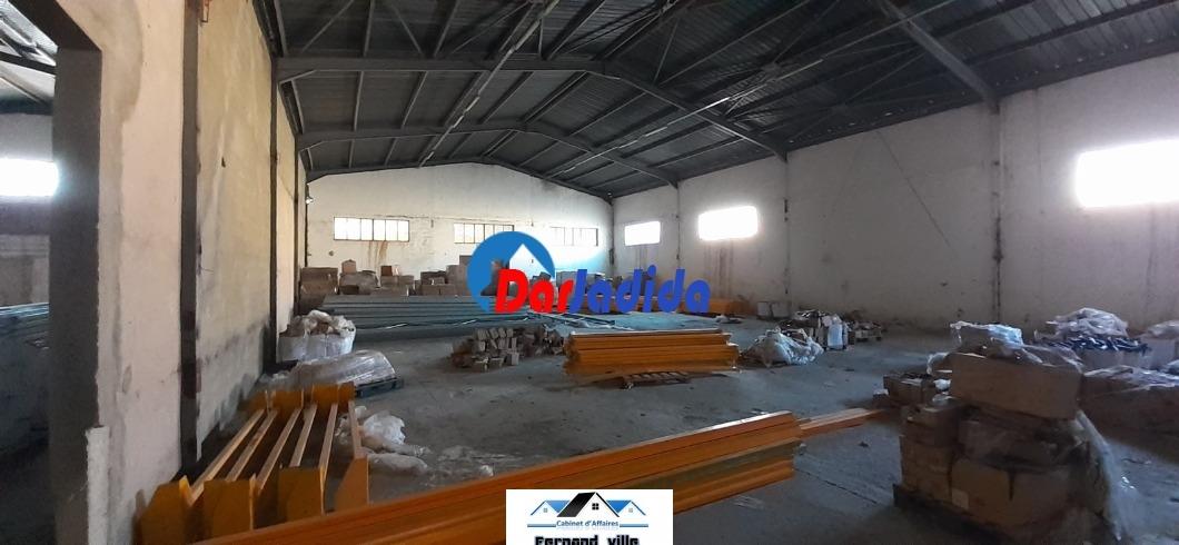 Location Hangar  Oran
