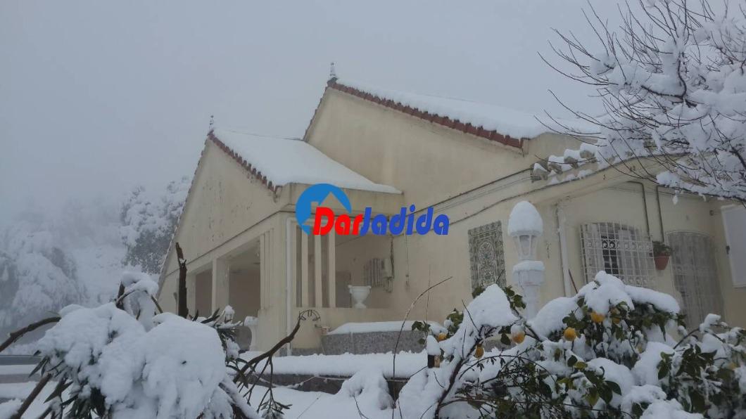 Vente Villa F5 Village de taguercift Freha Tizi-Ouzou