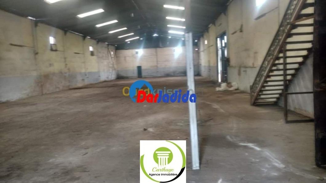 Vente Hangar  Annaba