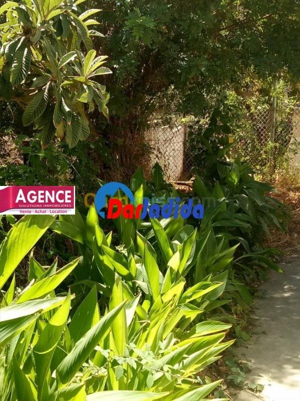 Vente Niveau de villa F3 Saint Therese Annaba Annaba